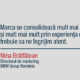 interviu cu Nina Bratfalean pentru chat with service intellect. directorul de marketing